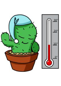 kaktusthermoa3
